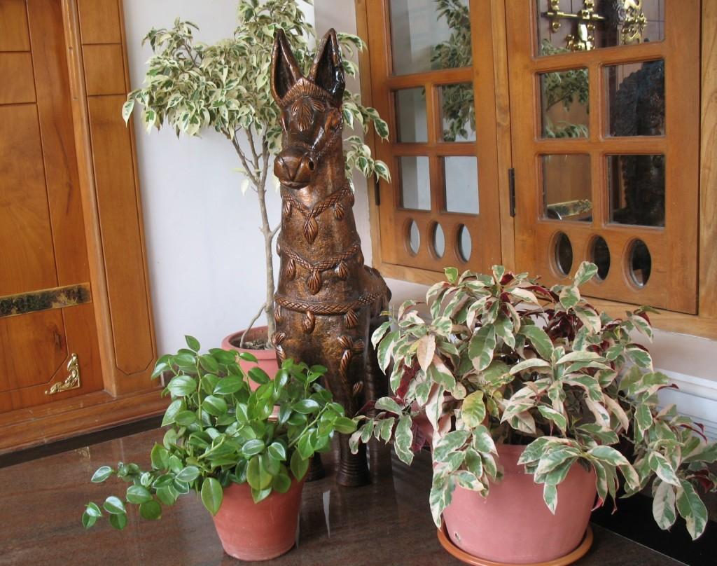 Terracotta Decor
