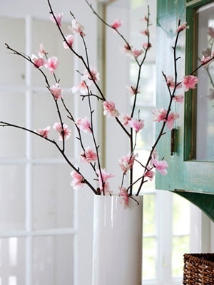 cherry blossoms in dc | whats ur home story