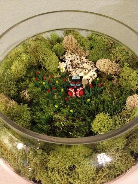 Reader Showcase   DIY Fairy Garden Terrarium
