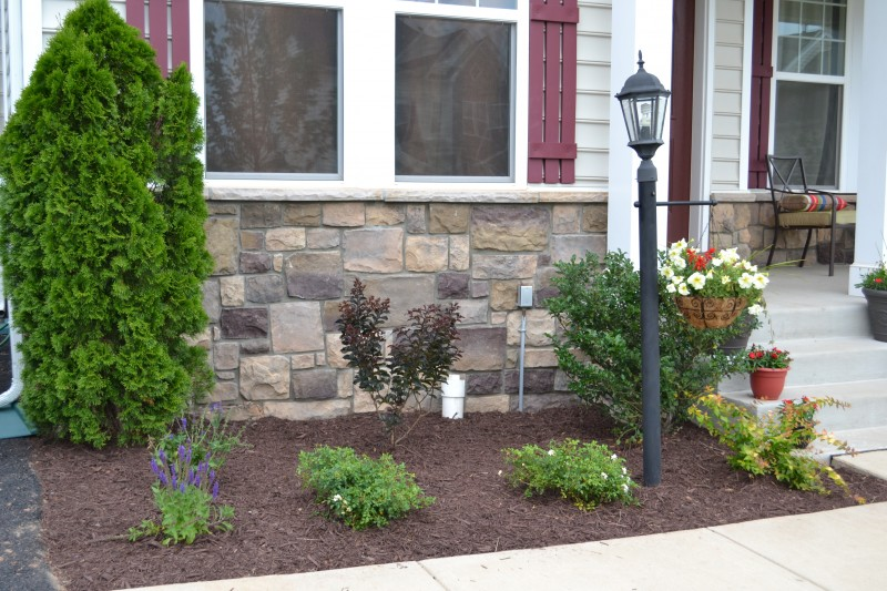 New Landscaping Reveal   Front Garden