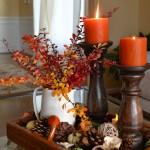 Holidays/ Seasonal
