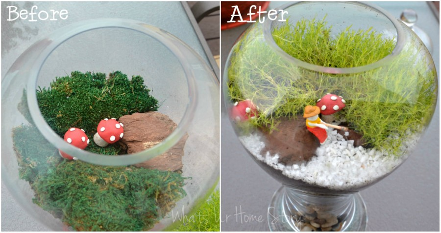 Yet Another Moss Terrarium