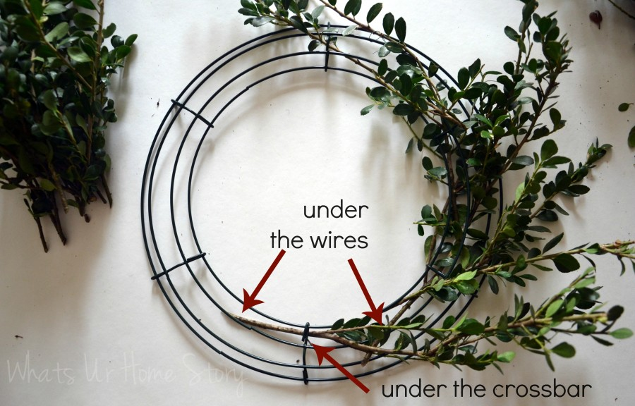 DIY Boxwood Wreath