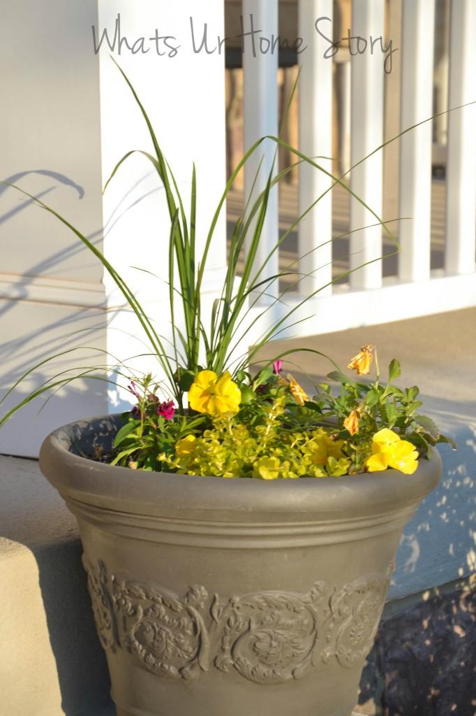 Spring Garden Update