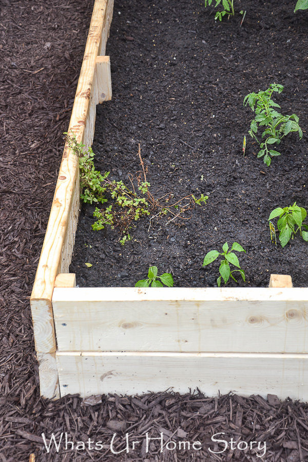 DIY Raised Garden Bed Whats Ur Home Story