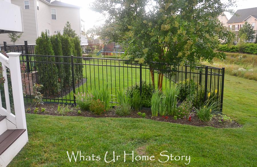 Home Garden Update