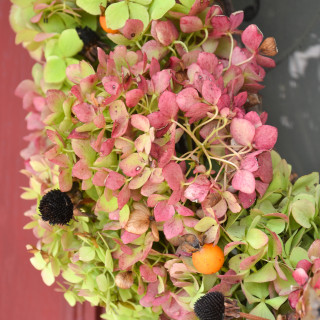 Simple Fall wreath with dried Hydrangeas and seed pods from the yard Hydrangea wreath