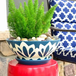 Fox Tail Fern in a blue and white painted planter DIY