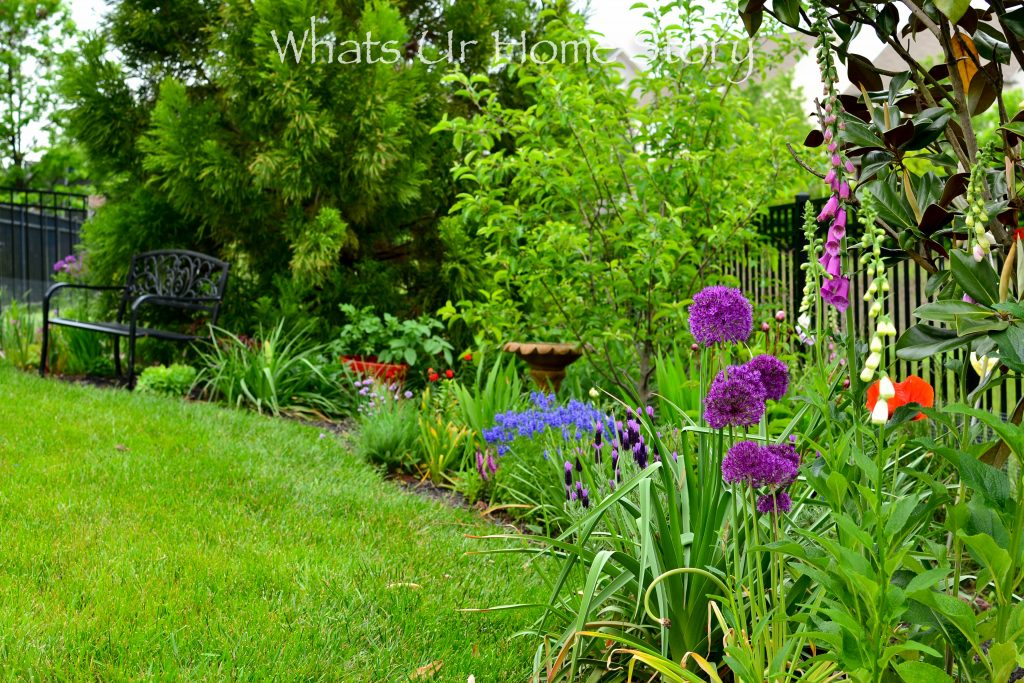Small Yard Garden Tour   May 2020