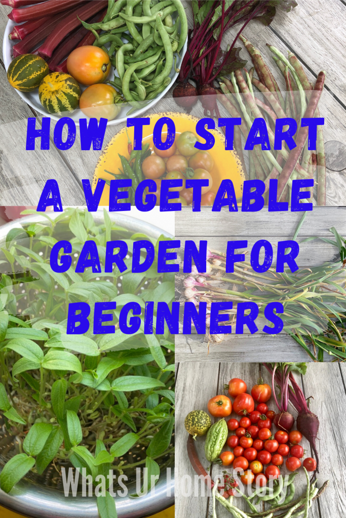 Starting A Vegetable Garden For Beginners