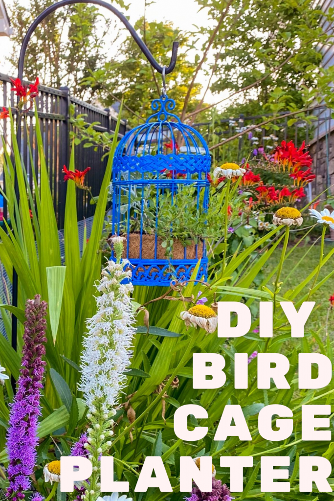 DIY Plant Pot Ideas   Bird Cage Planter